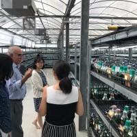 國合會吸收中美洲農牧保健組織  擴大病蟲害防治合作