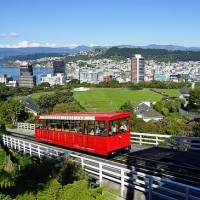 赴紐西蘭工作留學注意 7月起徵收旅遊捐35紐幣