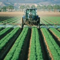 奧地利領先歐洲各國 禁用除草劑嘉磷塞