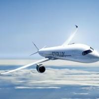 星宇航空取得13條航線 最快12月銷售機票