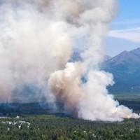 阿拉斯加也氣候異常 測得史上最高溫31.6度