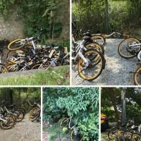 oBike apocalypse ends as Taipei scraps last of derelict bikes