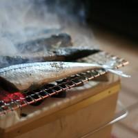 日本提秋刀魚捕獲量上限 限制台灣和中國捕撈