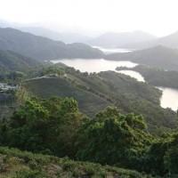 降低山坡地崩塌 林試所籲各界提升森林覆蓋率