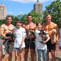 澳洲消防猛男與台灣美女獸醫 攜手推廣「領養不棄養」動保觀念