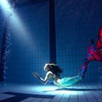 Mermaid to swim into Museum of Marine Science and Technology