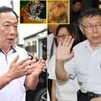【影片】柯文哲談郭台銘「獅虎比較合」 2020要看老虎是否承擔