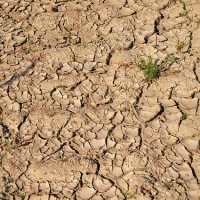 Drought in northern tropics not caused by global warming: Taiwan study