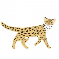 Copycatgate: Russian designer of copied art offers free leopard cat images to Taiwan