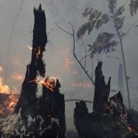 亞馬遜森林大火 巴西檢方調查總統支持者放火嫌疑