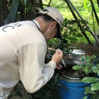 New Taipei City closes 8 hillside paths after chikungunya fever outbreak