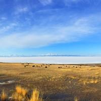 滿洲耆老講故事 新疆賽里木湖邊的杭州人和哈薩克人(上)
