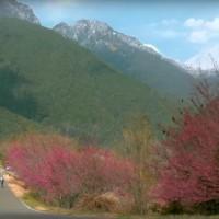 Video promoting cycling in Taiwan wins Magellan Awards