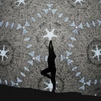 實驗「翻牆」歐美裝置藝術 浪漫銀針星空下做瑜伽