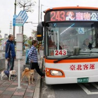 New Taipei launches new pet-friendly buses amid growing number of 'fur babies'