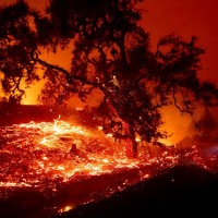 加州野火再起5萬人被迫疏散 洛杉磯、索諾馬郡進入緊急狀態
