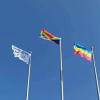 Video shows students rip down Taiwan flag, hoist rainbow flag at NTPU 70th anniversary event