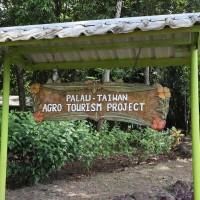 台灣與日本基金會攜手 共推帛琉生態旅遊
