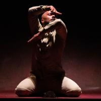 世界舞蹈大師最後獨舞 「陌生人」席捲台北兩廳院