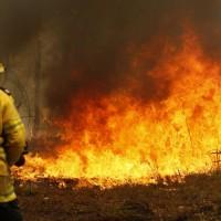 澳洲東岸野火肆虐已3死    當局宣佈進入緊急狀態