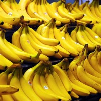 Philippines becomes China's largest banana exporter