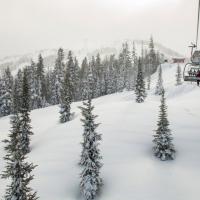 冬季假期揪雪猴泡溫泉 日本、加拿大熱門滑雪勝地揭露
