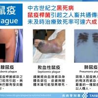 中國黑死病3類型全現蹤 去過這七省份要當心