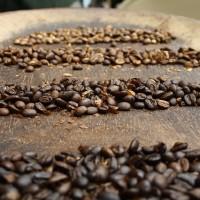 西雅圖咖啡涉摻低價豆 消費者即日起可申請退費