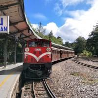 阿里山林鐵元旦祝山線車票即日起接受預訂