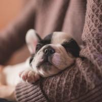 換個心態更好睡 美國研究:樂觀的人睡眠品質更好