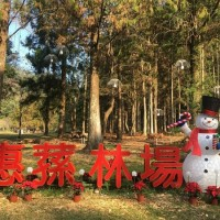 Chung Hsing University to light up tallest Christmas trees in Taiwan