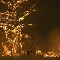 澳洲野火燒不停   環保少女開炮要求政府正視極端氣候