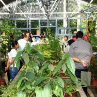 台灣孕育稀有植物種原 歷史收藏驚艷國際專家