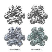 中研院原子級的解析度分析酵素的蛋白質構造 有助發展生質燃料