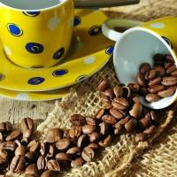 簡又新專欄 – 從一顆咖啡豆看氣候變遷所帶來的影響
