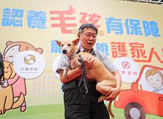Taipei Animal Shelter rebuilding plans halted, new location discussed