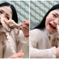 Video shows octopus nearly rip off Chinese streamer's face