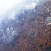 簡又新專欄 – 亞馬遜雨林森林大火