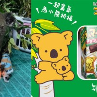Carrefour Taiwan says sales of koala cookies aid animals amid wildfires