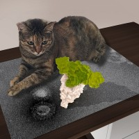 Taiwan scientists unlock secrets of fatal cat disease