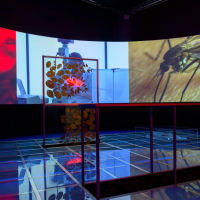 台灣亞洲藝術雙年展精彩展品 新加坡同步放映交流