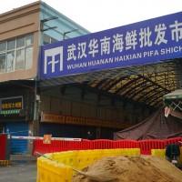 快訊!中國武漢肺炎共440人確診 9人死亡 病毒來源為野生動物