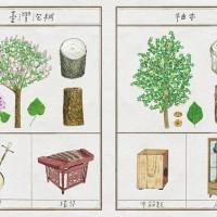 Taiwan's Forestry Bureau makes a mark with hand-drawn calendars
