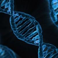 發現DNA的幕後英雌