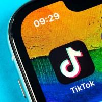 Reddit CEO calls popular Chinese app TikTok 'parasitic' spyware