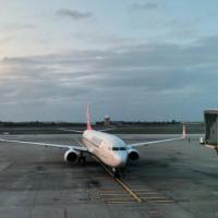 以色列團11旅客回台灣 1人因呼吸道症狀送醫