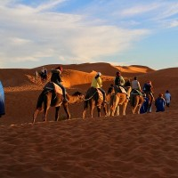 Taiwan tourists trapped in Morocco, Peru after sudden border closures due to Wuhan virus
