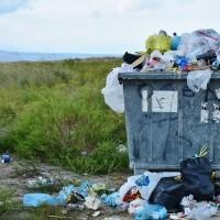 塑膠垃圾有解了? 科學家發現可分解塑膠的細菌