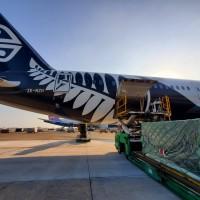 疫情延燒載客量減少   紐航客機轉型加入貨運市場