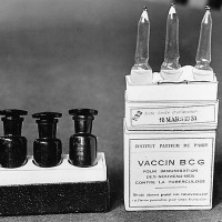 Studies name Bacillus Calmette-Guérin vaccine as latest help against coronavirus